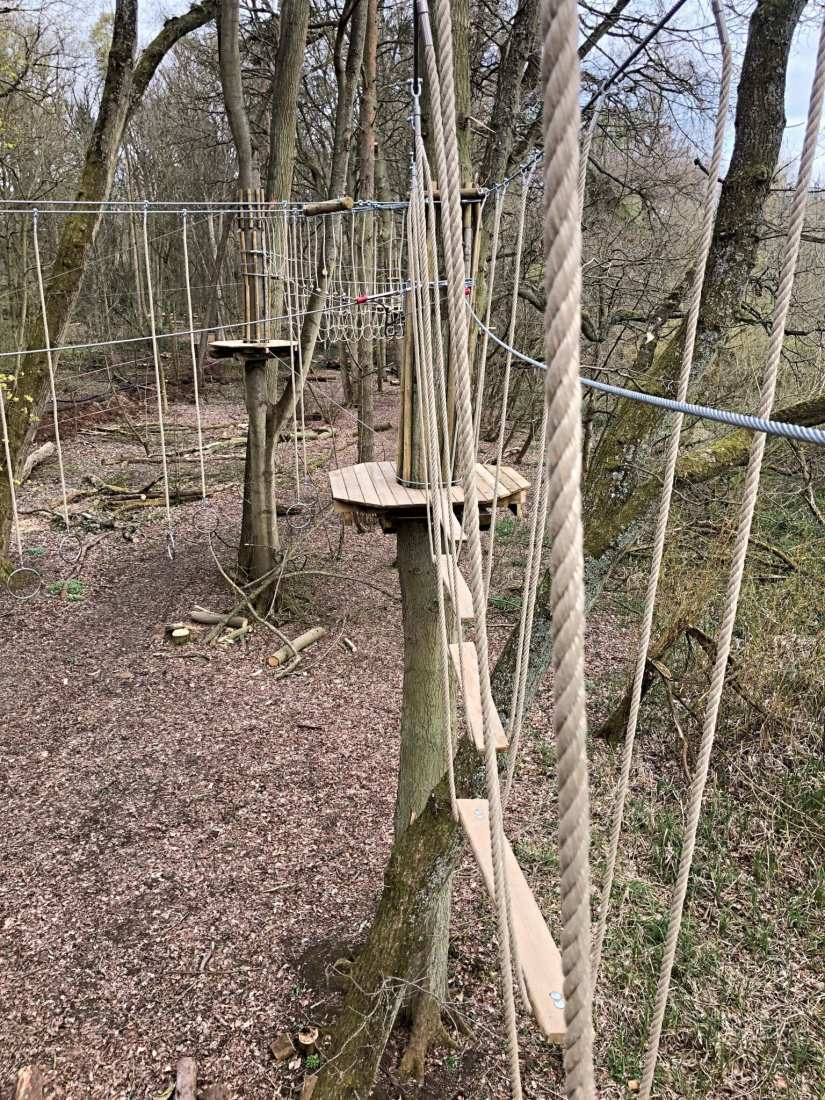 Go Ape Obstacles